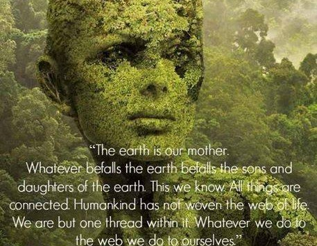Mother Earth – What we Give we Get Back